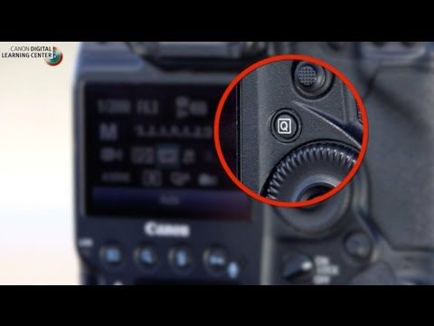 PhotographerTips Canon: Bird Photography with Arthur Morris: Camera settings - PhotographerTips