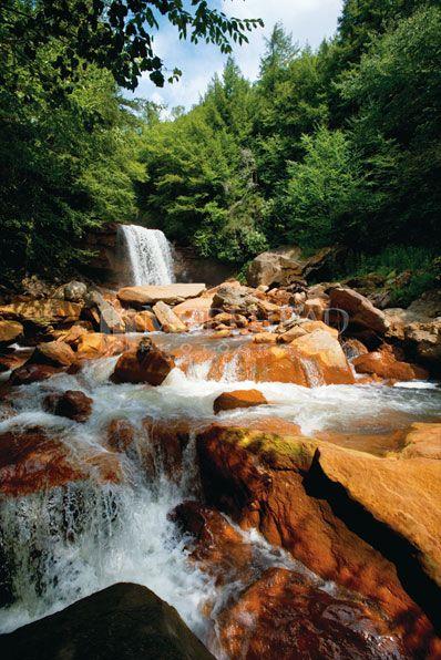 Douglas Falls near Thomas, WV