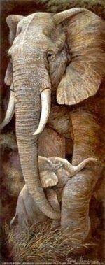 THE AMARA ELEPHANT BLOG!