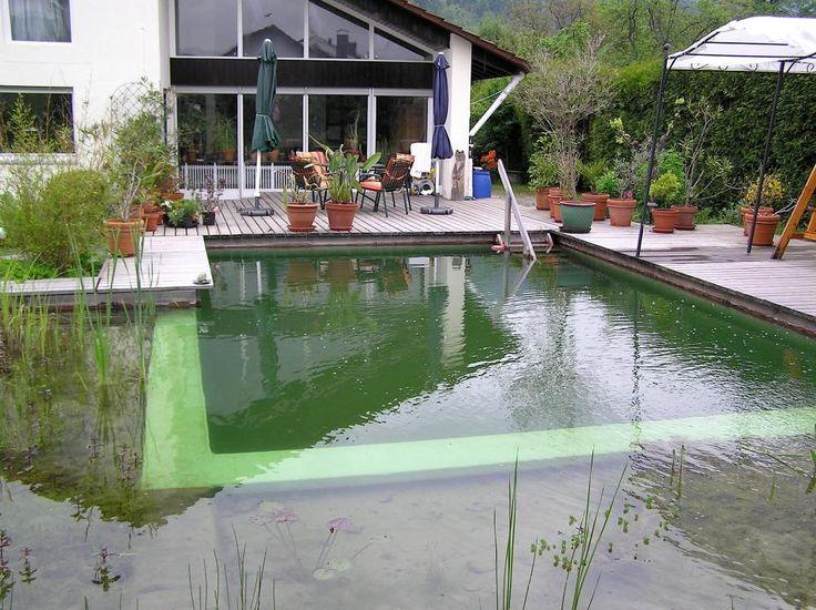 die wichtigsten fragen zum schwimmteich schwimmen pinterest schwimmteich fragen und. Black Bedroom Furniture Sets. Home Design Ideas