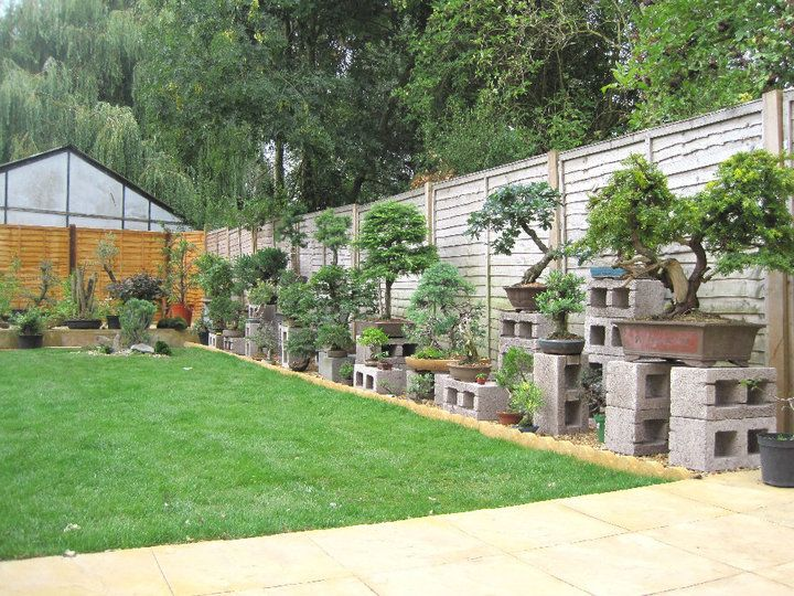 Marvelous Bonsai Garden