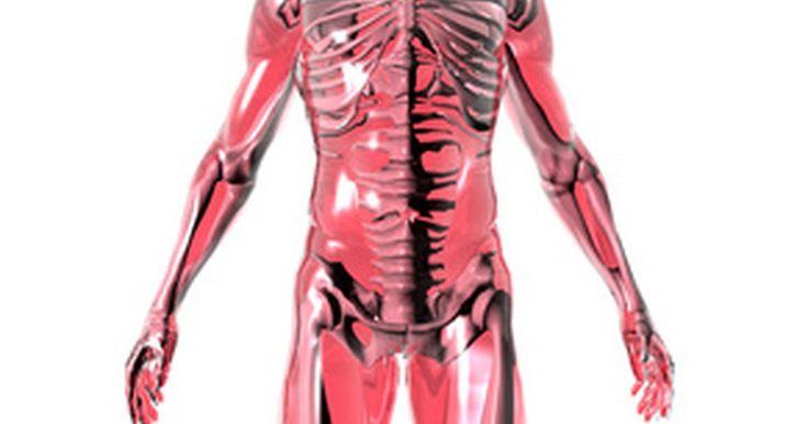 Formas naturales de mejorar la función del hígado. Un hígado funcionando eficientemente es necesario para la buena salud general. El hígado es responsable en gran medida de la eliminación de las toxinas del cuerpo, así como de ayudar en la digestión. Existen muchos alimentos que ayudan con la función del hígado. También hay varios remedios caseros fáciles para mejorar la salud del mismo.