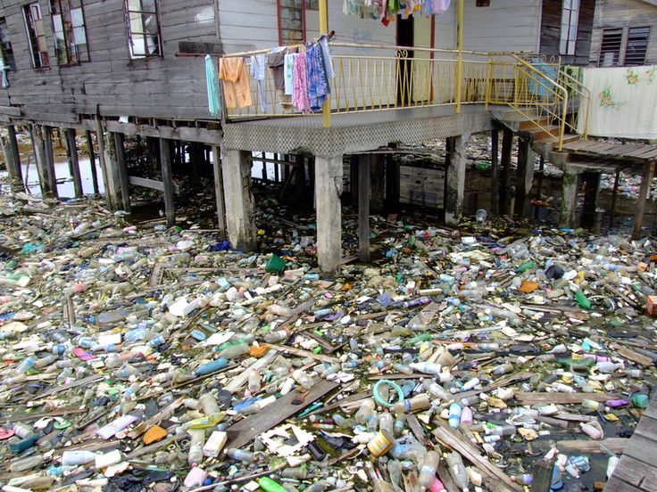 littering in malaysia View littering in malaysia from marketing 21 at university of malaysia sabah littering in malaysia has proven not only pervasive, but near-impossible to stop the malaysian plastics manufacturers.