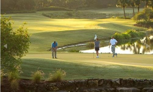 Live in the intimate enclave of Cypress Bend, within Fort Myers' celebrated Shadow Wood Preserve. The large sparkling lakes and fairways of The Preserve's 18-hole championship golf course ...