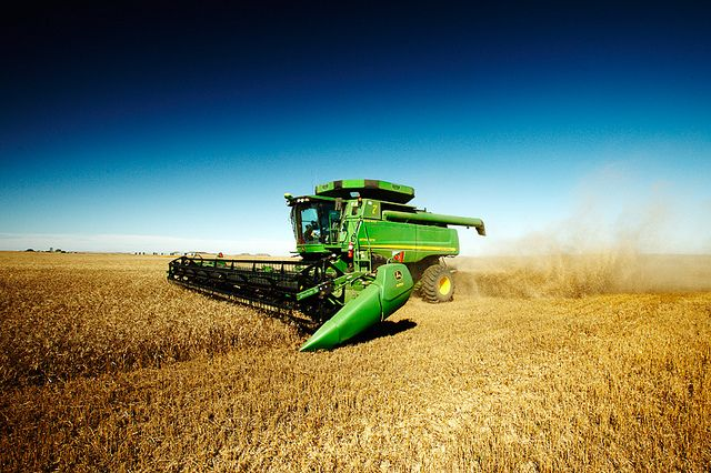John Deere combine cutting wheat, You see these a lot at harvest time.