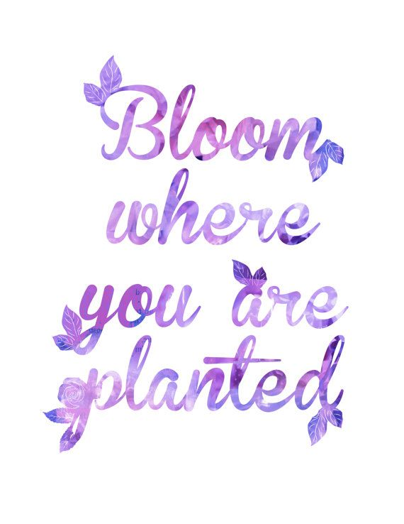 Bloom Where You Are Planted Purple Art Print, Home Decor, Art Print, Inspirational Quote, Download