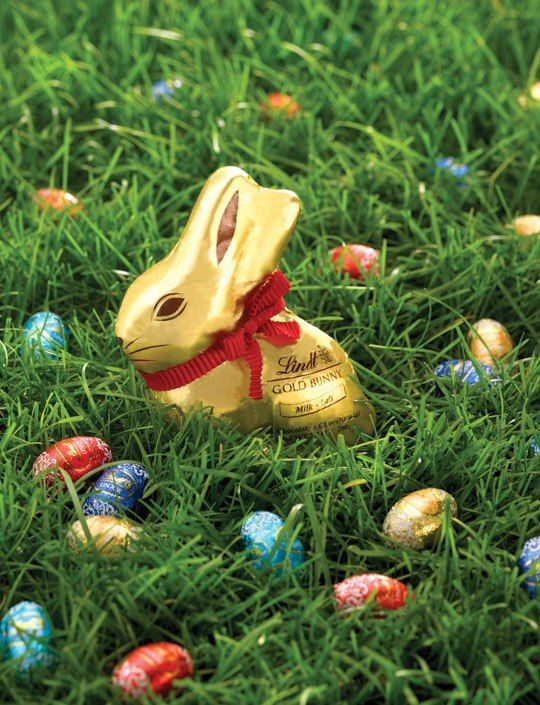 Other chocolate bunnies beware, the Lindt Gold Bunny is dangerously delectable #Lindt_Chocolate @ShopCrabtree