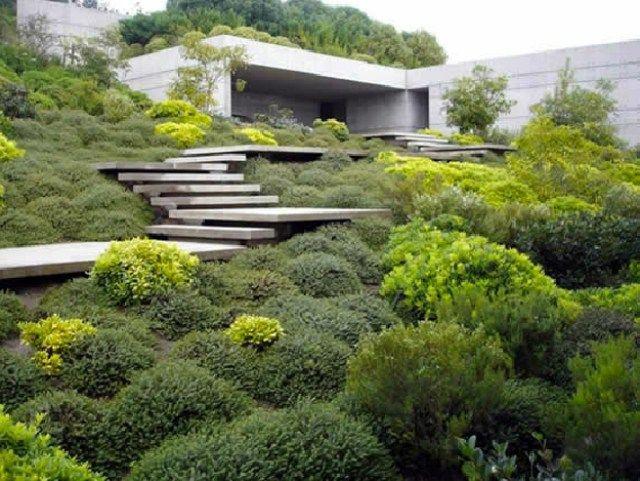 conception de béton escaliers minimalistes jardin jardin plat recouvert de végétation