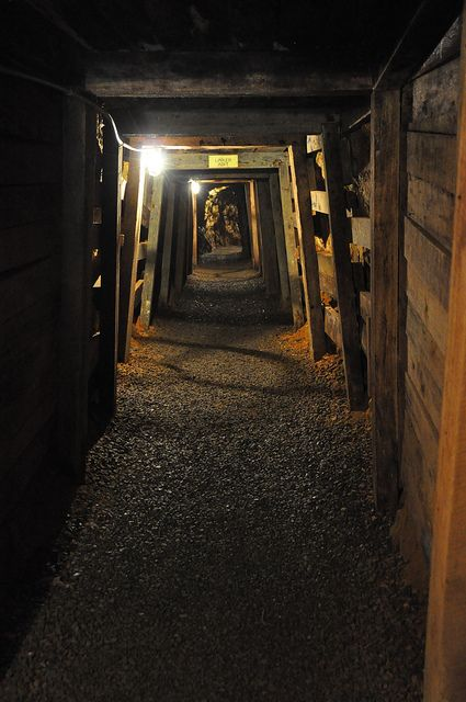Reed Gold Mine, near Charlotte, NC.  This is a great historic site that the kids will love.  Very cool.