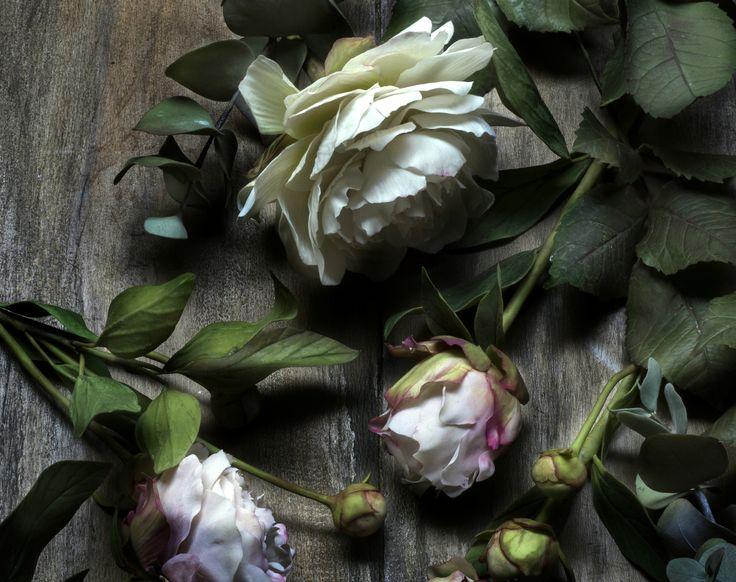 #peonies'blossom #coldporcelainpeonies #clayart