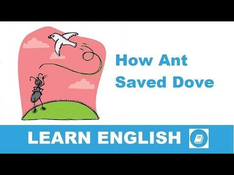 How Ant Saved Dove - Short Story in English