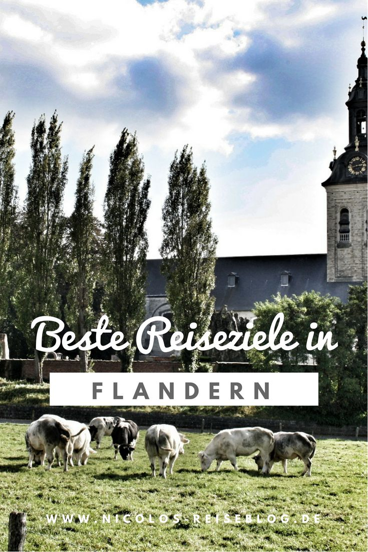 Die besten Reiseziele in Flandern beim Belgien Urlaub. Sehenswürdigkeiten, Reisetipps und Fotos von meiner Flandern Rundreise. Flandern #belgium #belgien #reisen #travel