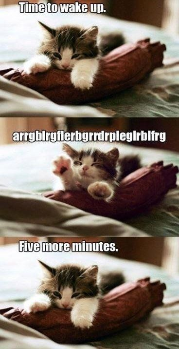 Five more minutes...