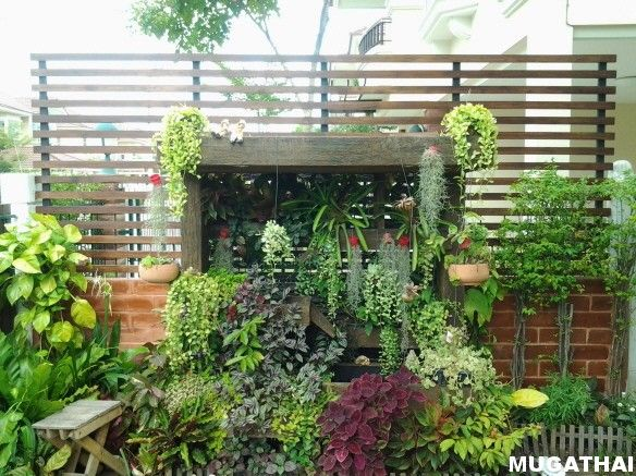 9 best images about landscaping ideas for front yard on