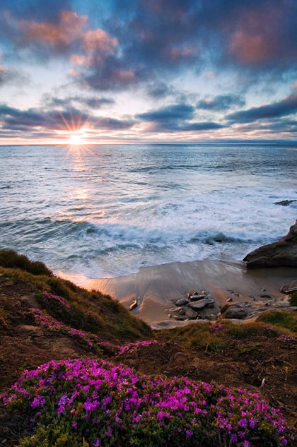 Sunset at the Cove - Watching the sunset at the La Jolla Cove is something I could do every night for the rest of my life. With seals barking and waves crashing against the rocks below, this magnificent piece of California coastline is truly a site to behold. Copyright - Rachid Dahnoun
