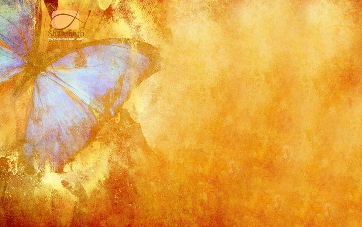 Butterfly Free Desktop - http://wallawy.com/butterfly-free-desktop ...