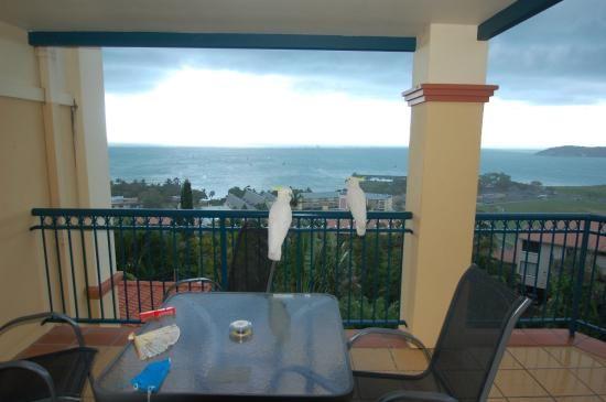 Mediterranean Resorts (Airlie Beach): See 115 Reviews and 71 Photos - TripAdvisor