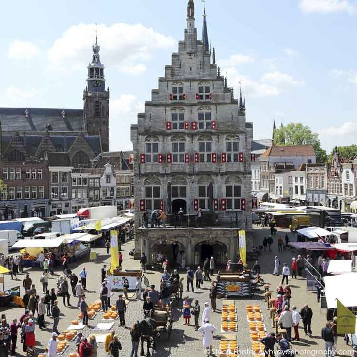 Gouda Cheese Market takes place in front of the Gothic town hall in Gouda, the Netherlands.