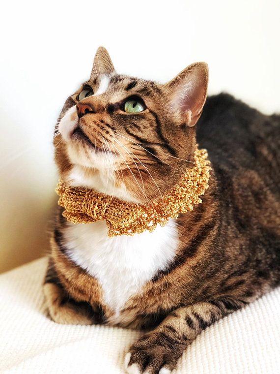 Wedding Cat Collar Elastic Crochet Gold Bow Small Dog Collar Pet Necklace Unique Handmade Pet Accessories Small Dog Collar Cat Collars Handmade Pet