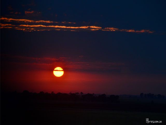 Sunrise near Bloemfontein, Free State, South Africa, (c) Florescence