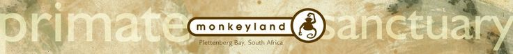 Monkeyland Primate Sanctuary Plettenberg Bay Garden Route Adventures South Africa