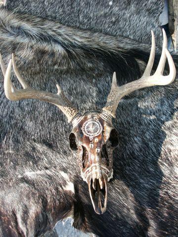 painted deer skulls | Artistic Painted Deer Skull