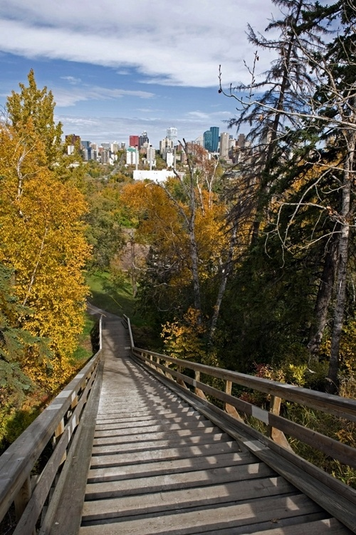 Edmonton's river valley comprises over 20 major parks and attractions and forms the largest expanses of urban parkland in North America.