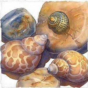 On the Rocks by Barbara Groenteman Watercolor ~  x