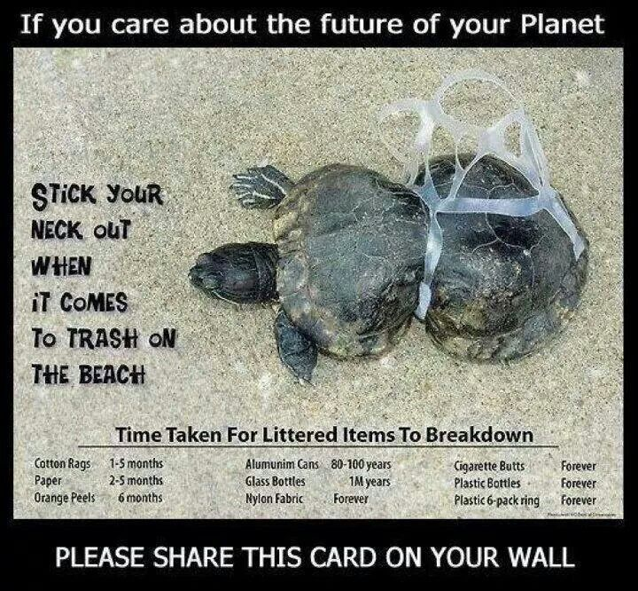 Pick up litter...
