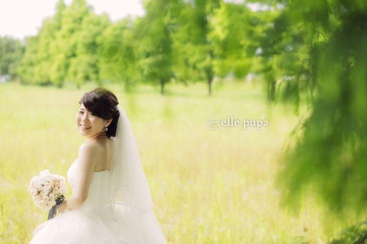 真夏の琵琶湖前撮り*  *elle pupa blog*