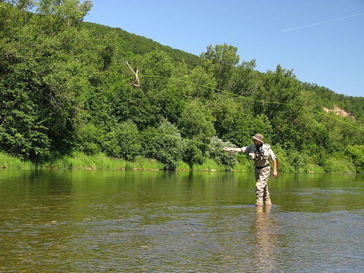 Fly Fishing the Gros Ventre   Fly fishing, Destin fishing