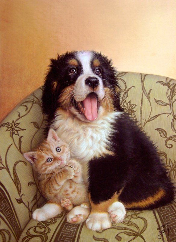 Sweet Friends - So stinking cute!  You know this is not a photo, there is no drool on the kitten!