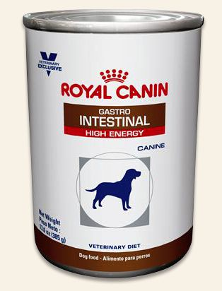 Royal Canin Gi High Energy Can For Dogs Is A Complete And