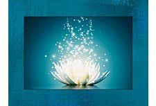 Bild, Kunstdruck, Home affaire, »Georgiev: Magie der Lotus-Blume«, 60/81 cm