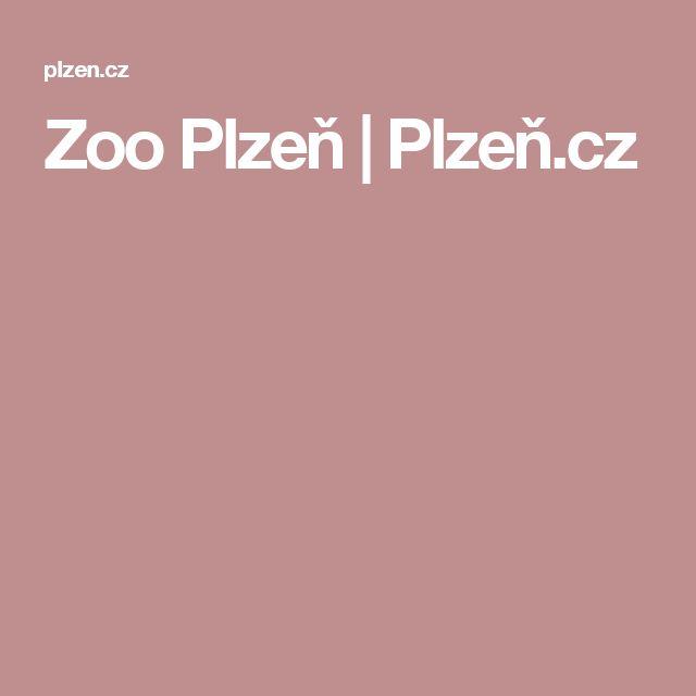 Zoo Plzeň | Plzeň.cz