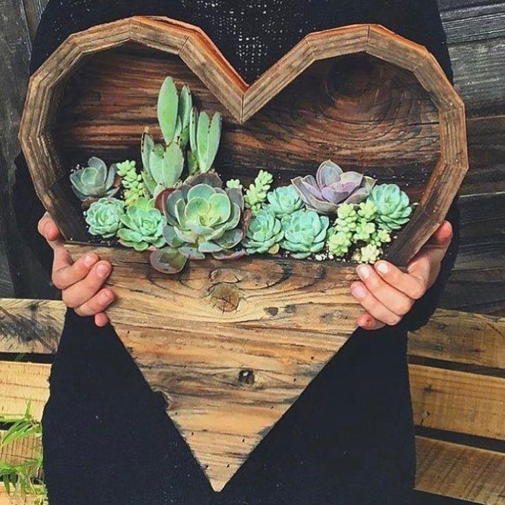 Happy Valentine's Day!! ❤️ Pic: @knotandgrain  #thesucculentsource #succulent #succulents