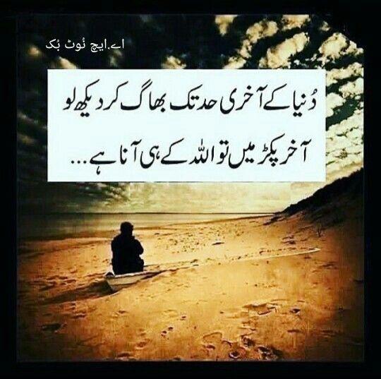 1000 urdu quotes on pinterest mirza ghalib punjabi
