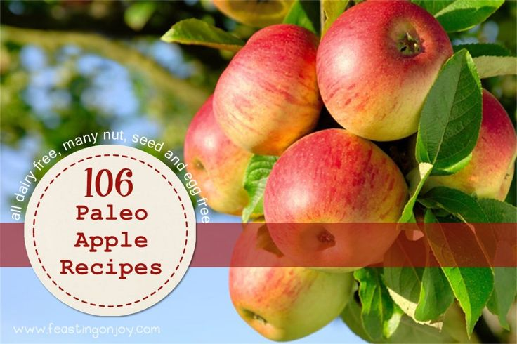 106-paleo-apple-recipes-all-dairy-free-many-nut-seed-and-egg-free