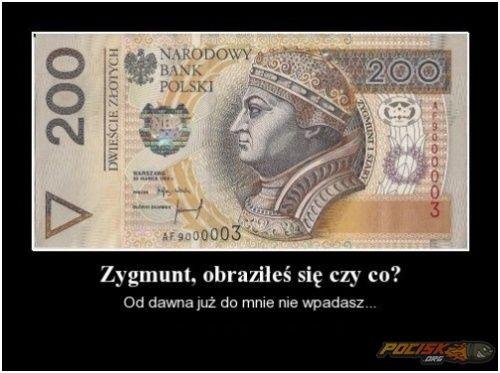 Obrażony Zygmunt ;)  www.pocisk.org