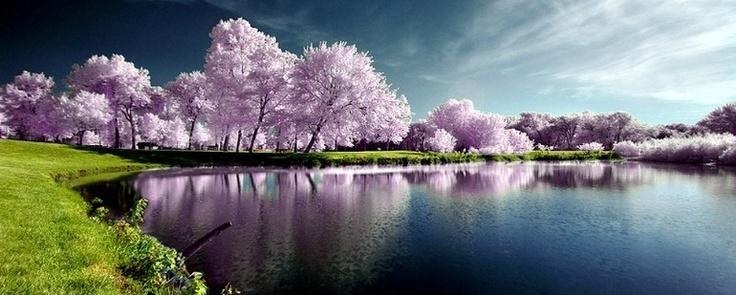 21 Most Beautiful Nature Photos On Stumbleupon