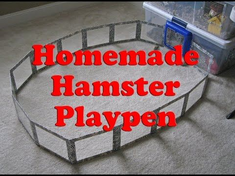 Homemade Hamster Playpen by HAMMY TIME - YouTube