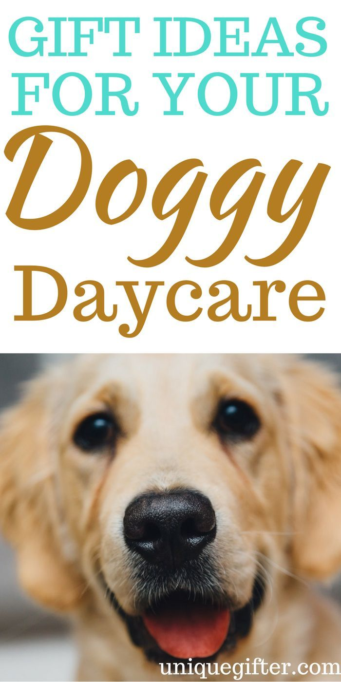 Gift Ideas for your Doggy Daycare   Motivational Gifts   Pinterest ...