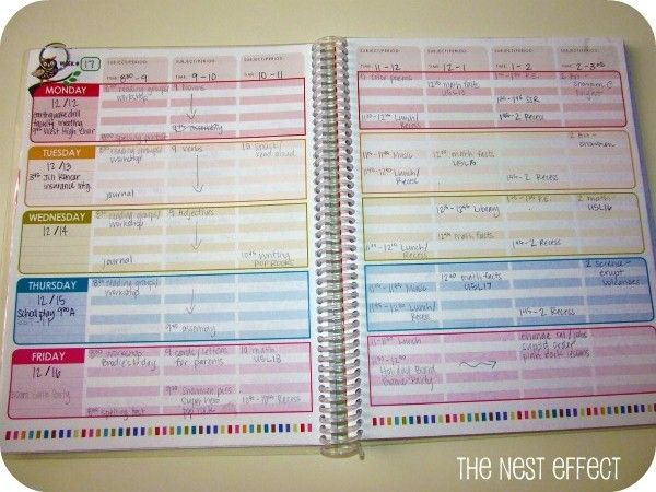 The nest effect my favorite things erin condren teacher for Free planbook