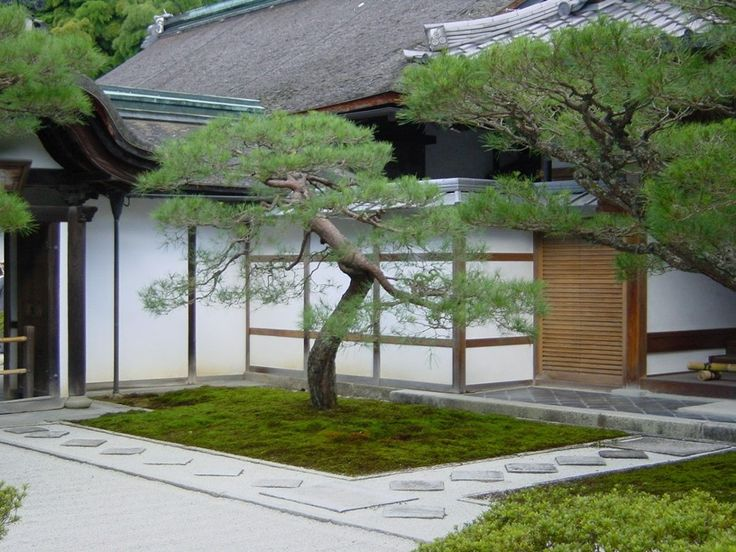 17 best images about japanese garden on pinterest trees for Contemporary japanese garden design