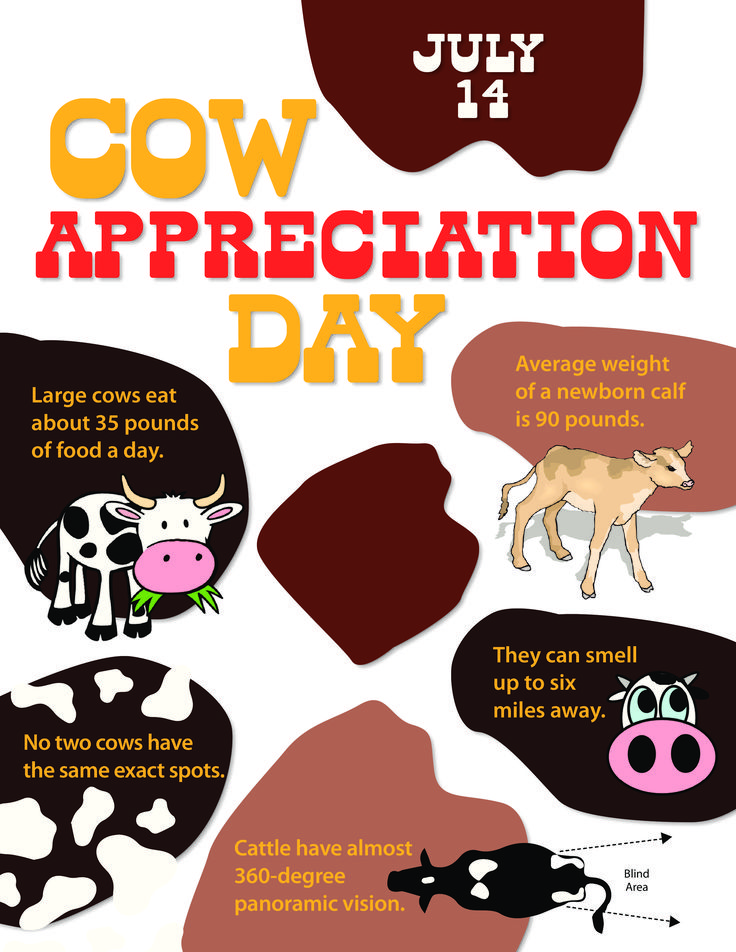 Celebrate Cow Appreciation Day by learning these fun facts about our bovine friends!
