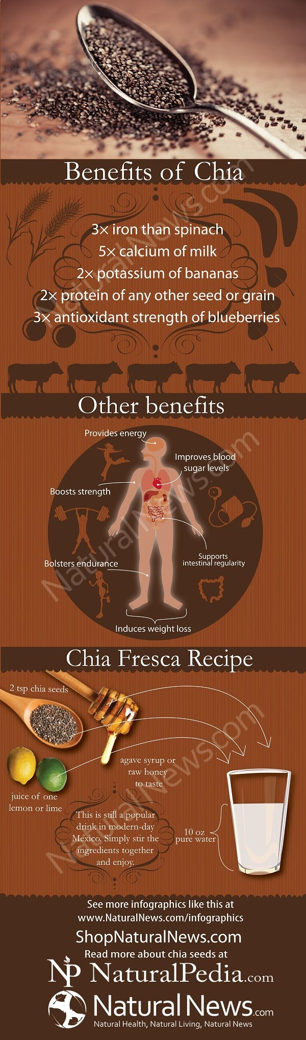 Chia seeds are really good for you. I've started adding a TBSP or two to just about everything I cook. They're also a good choice for long-term food storage, because they keep well and don't take up much space.
