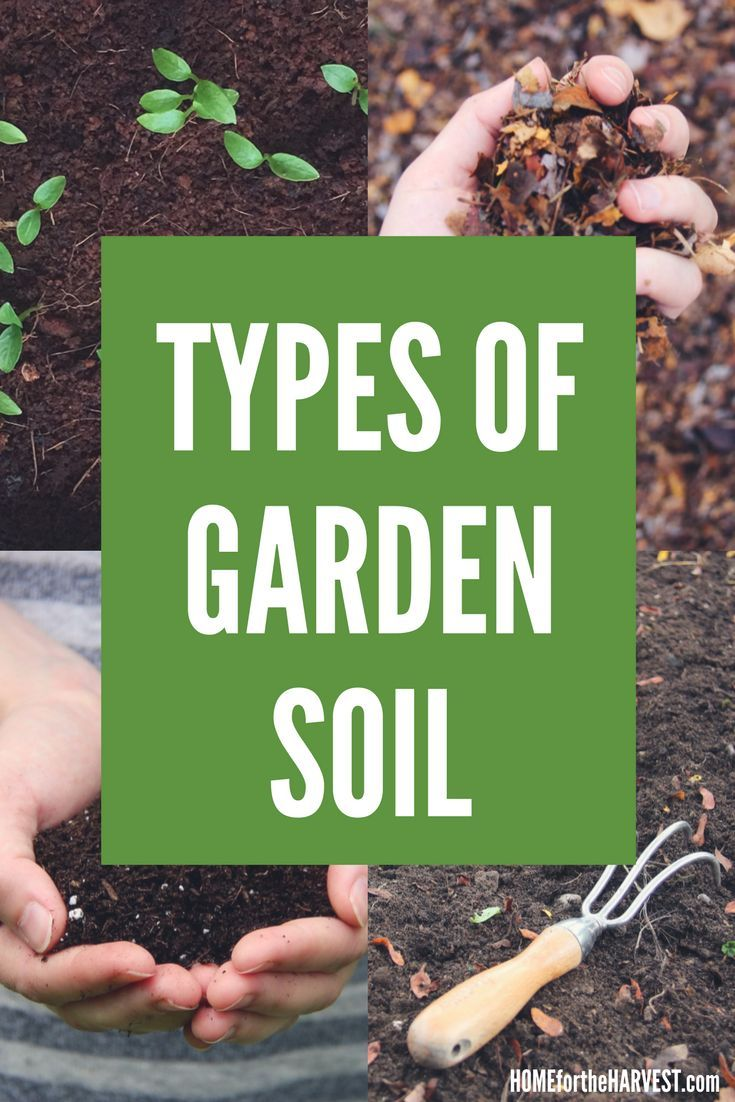 Types of Soil Explained - All about the different types of soil for your garden | Home for the Harvest #typesofsoil #gardening #soil #healthysoil #organicgardening #organic #permaculture #soiltypes