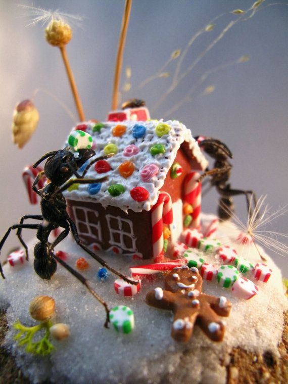 Ants Building a Gingerbread House Miniature Insect Dioramas by LisaWoodCuriosities