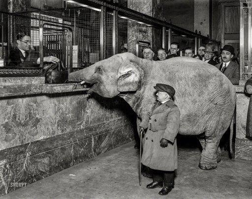 Elephant Bank: 1924