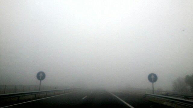 En la niebla. Lleida.